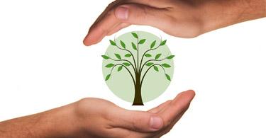 EFE Blog environnement
